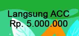 ayo cash apk pinjaman online galbay