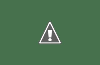 THPS – Strategic Information Director