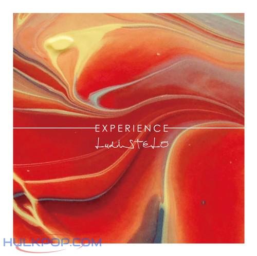 LudiSTELO – Experience