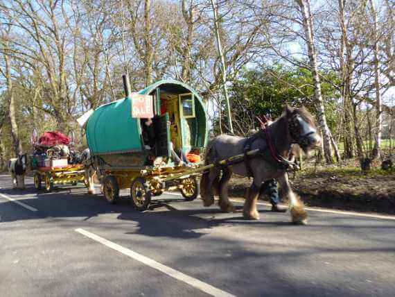 Traditional horse-drawn gypsy trailer going down England's A4. Vanholio.com
