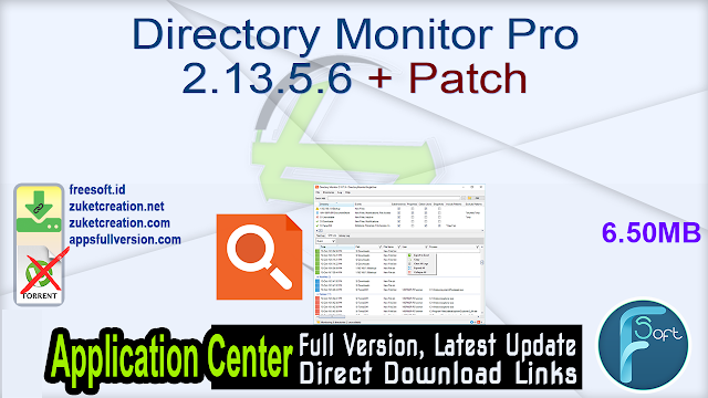 Directory Monitor Pro 2.13.5.6 + Patch