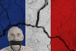 France: More Death To Free Speech - Crashing By Design