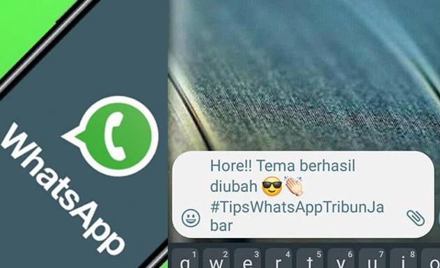 Trik Baru CaraSembunyikan Status 'Sedang Mengetik' di WhatsApp, Tak Ada Lagi yang Penasaran,Ini Triknya 3