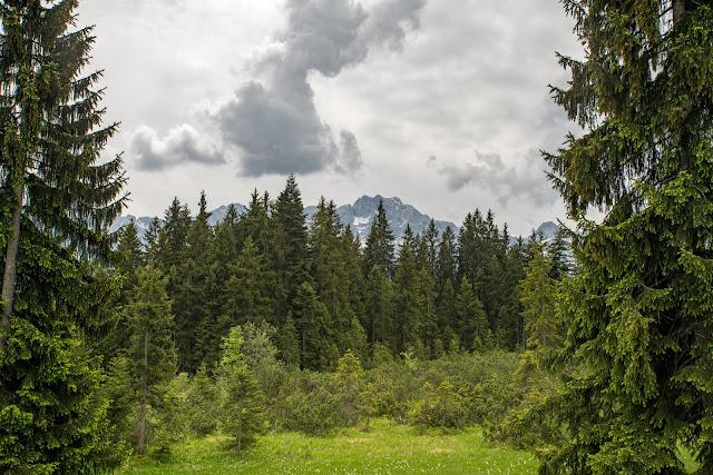 Hausberg-Runde und Partnachklamm  Wanderung Garmisch-Partenkirchen 10