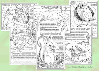 Plants and Animals of the Sonoran Desert and Colorado Plateau