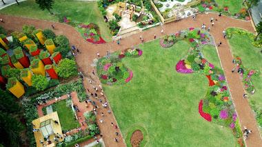 Shenzhen Flower Show 2019 en el Jardín Botánico de Fairy Lake