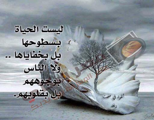 صور وخواطر للفيس بوك picture