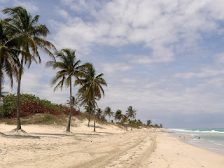 Kuba, Havanna, Playas del Este, breiter, menschenleerer Strand, der sich in die Ferne erstreckt, rechts das Meer, links Palmen.
