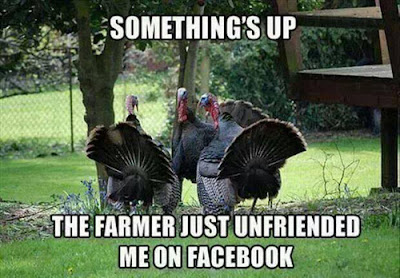 funny happy thanksgiving images
