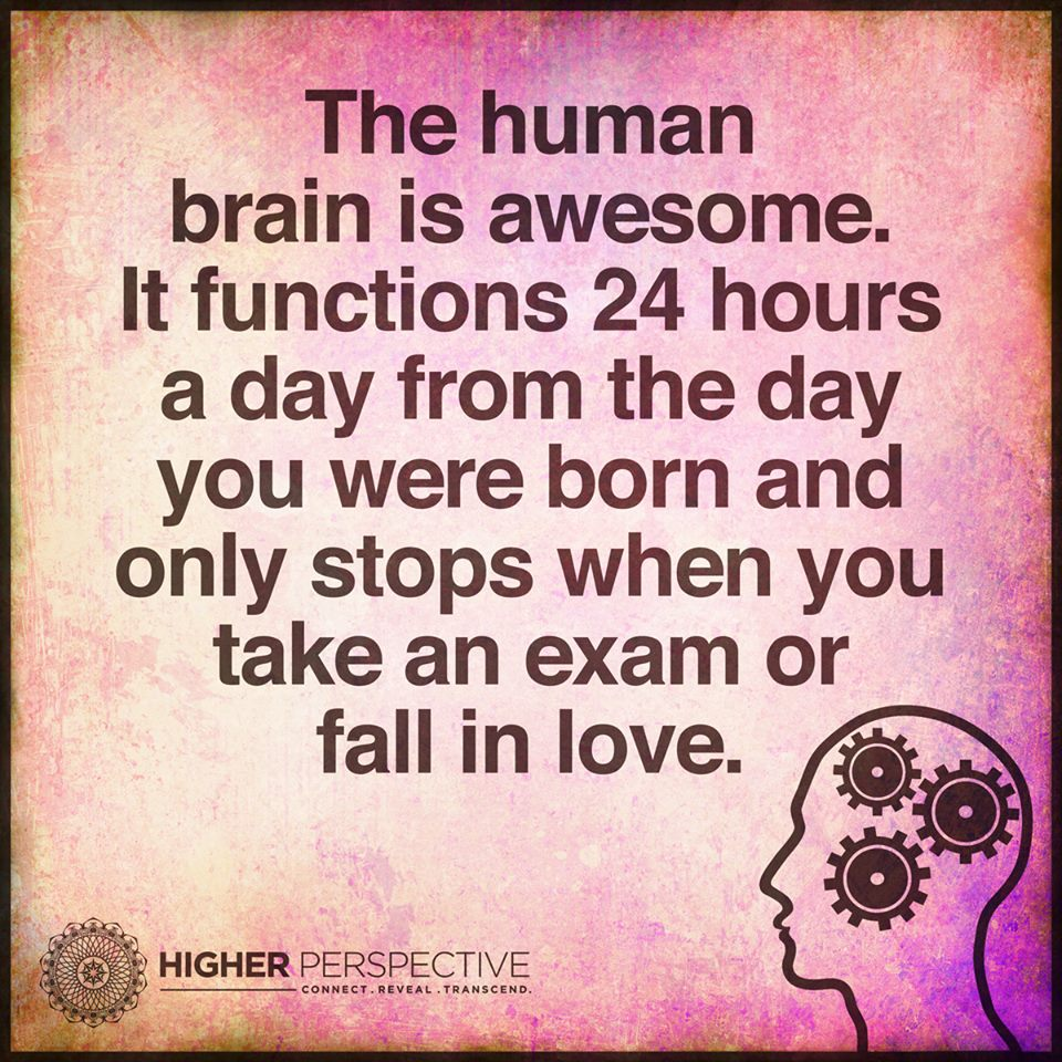 The Human Brain Is Awesome It Functions 24 Hours A Day From The Day