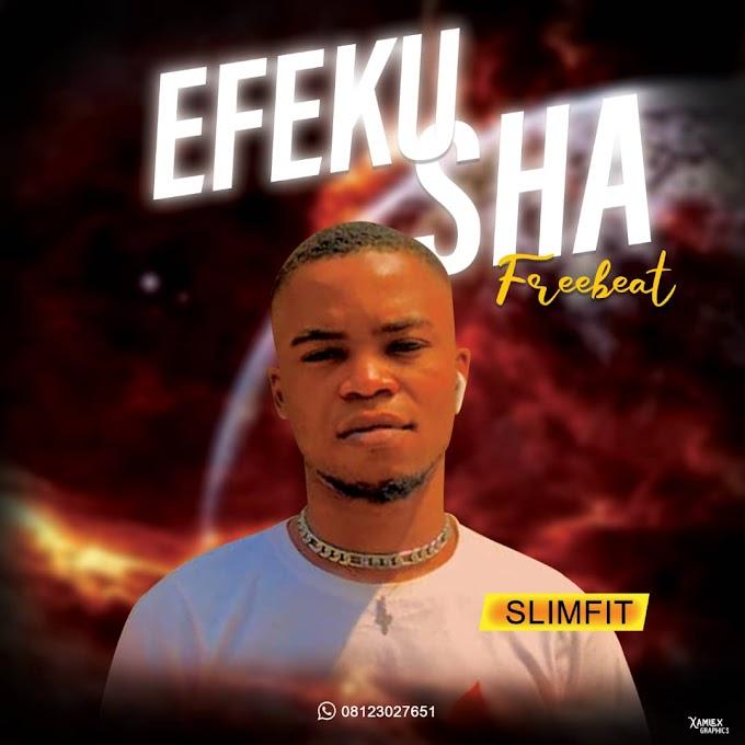 [FREE INSTRUMENTAL] SLIMFIT _-_ EFEKU SHA (Free beat)