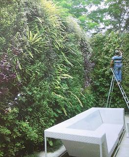 Taman Vertikal | Vertical Garden | jasataman.co.id V