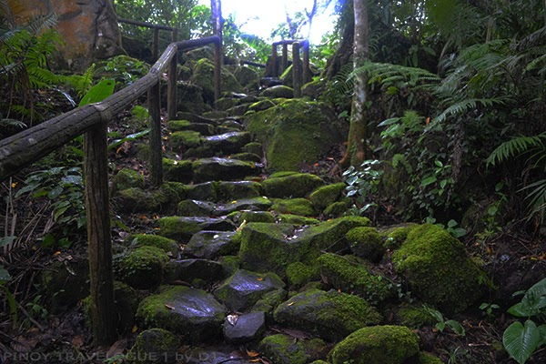 Moss covered rocks that makes up the trail to Lake to Danao