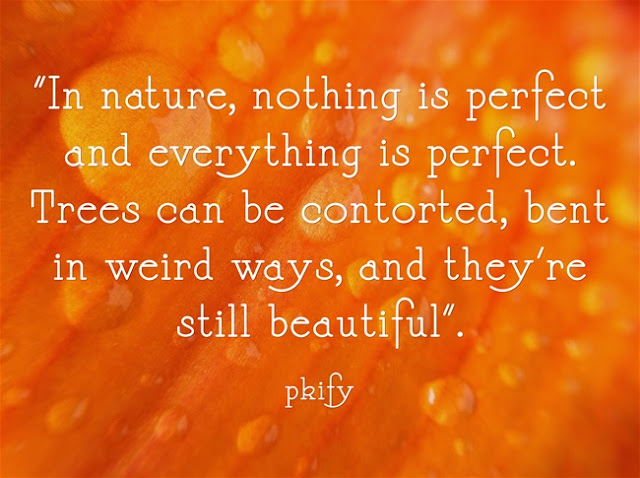 Nothing is Perfect and Everything is Perfect Nature Quotes