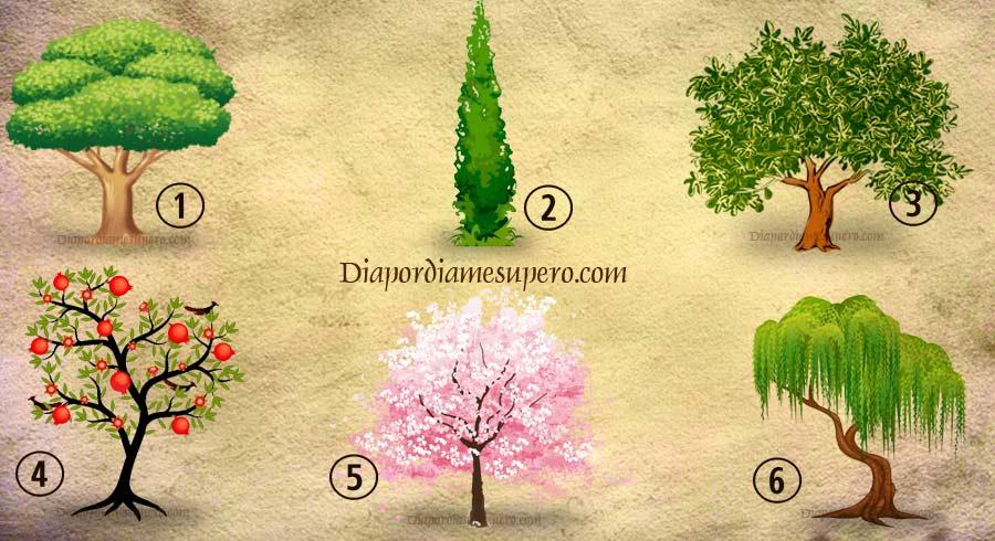 Test de personalidad: ¿Cuál árbol plantarías en tu jardín?