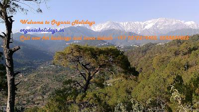 Organic Holidays India