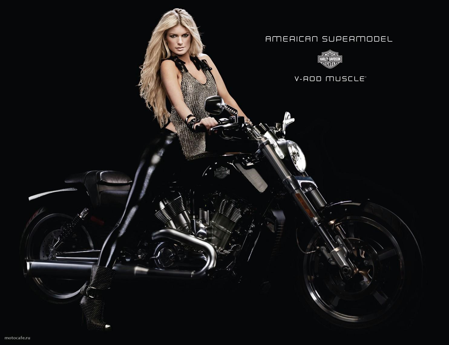 Harley Davidson: Harley Davidson V Rod Muscle