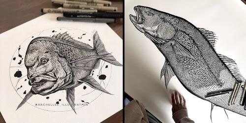 00-Animal-Drawings-Rachel-Lee-www-designstack-co