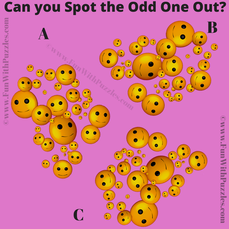 Observation Test Visual Brain Teaser with Answer-Fun With