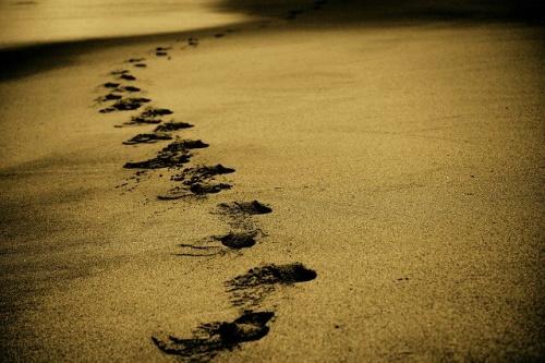 Pegadas na areia da praia. #PraCegoVer
