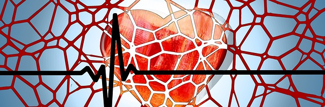 vascular, blood vessel, aliran darah, kini saya ngerti, sel darah