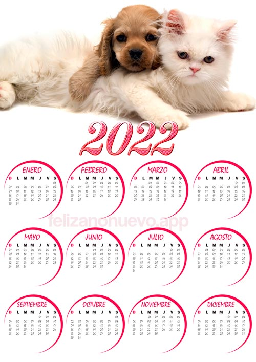 calendario 2022 de gato tierno para imprimir
