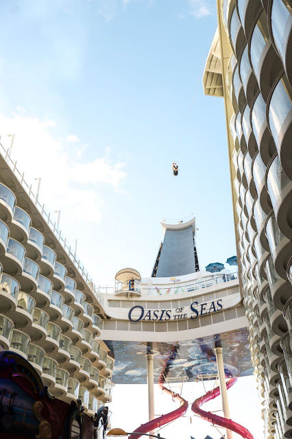 Zip Line | Oasis of the Seas Couple's Review