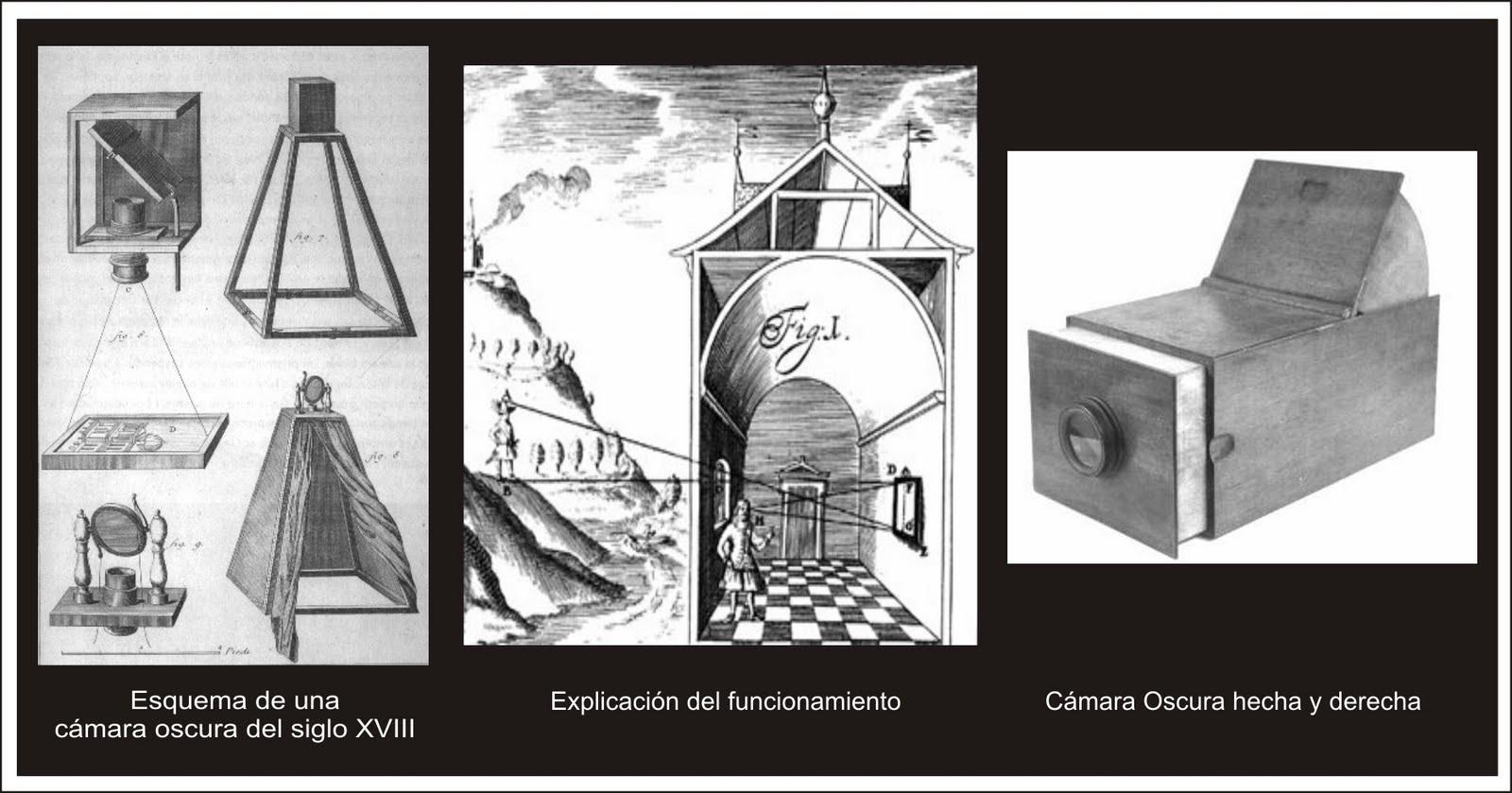 Totum Revolutum El Vedutista Canaletto