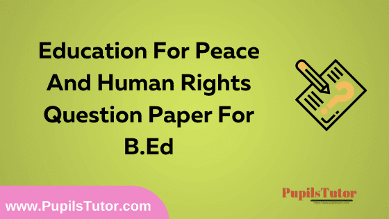 Education For Peace And Human Rights Question Paper For B.Ed 1st And 2nd Year And All The 4 Semesters In English, Hindi And Marathi Medium Free Download PDF   Education For Peace And Human Rights Question Paper In English   Education For Peace And Human Rights Question Paper In Hindi   Education For Peace And Human Rights Question Paper In Marathi