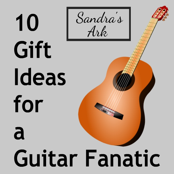sandra 39 s ark 10 gift ideas for a guitar fanatic need help. Black Bedroom Furniture Sets. Home Design Ideas