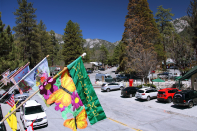 Idyllwild is a small-town antidote to city life in Southern California