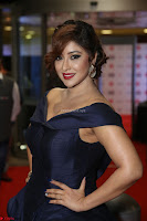 Payal Ghosh aka Harika in Dark Blue Deep Neck Sleeveless Gown at 64th Jio Filmfare Awards South 2017 ~  Exclusive 065.JPG