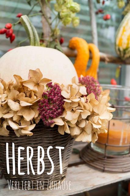 selbst gemachte Dekoration Herbst 2016: Kürbis,Hortensie und Co