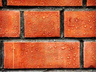 Bricks can be a highlight of an interior