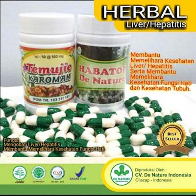 Obat Liver hepatitis