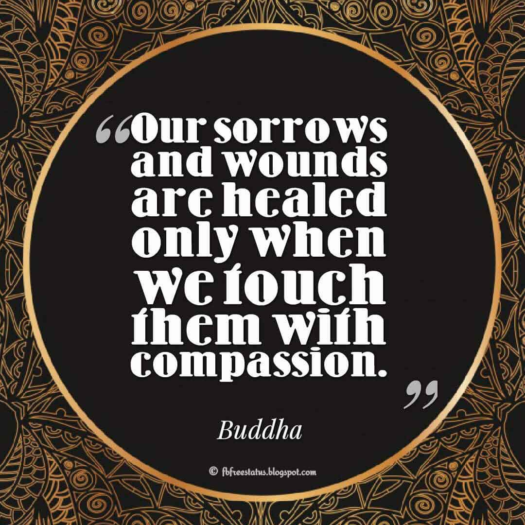 """Our sorrows and wounds are healed only when we touch them with compassion."" ― Buddha"