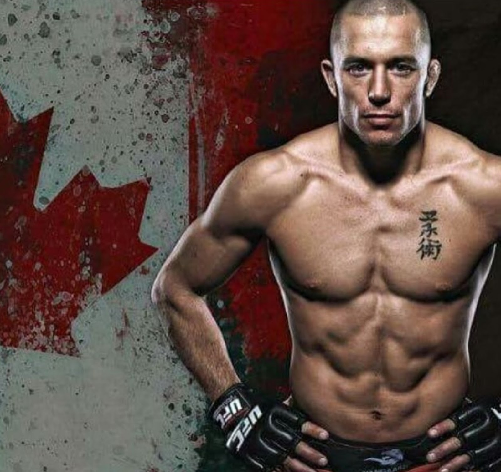GEORGES ST-PIERRE 4