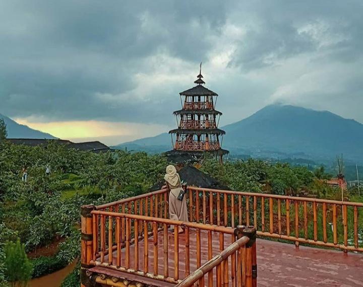 Agrowisata Kopeng Gunungsari Tiket Masuk Dan Lokasi