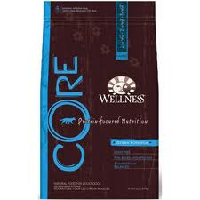 Wellness Core Hypoallergenic Dog Food