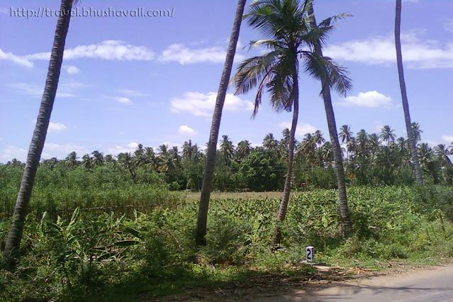 Pettavaithalai near Trichy
