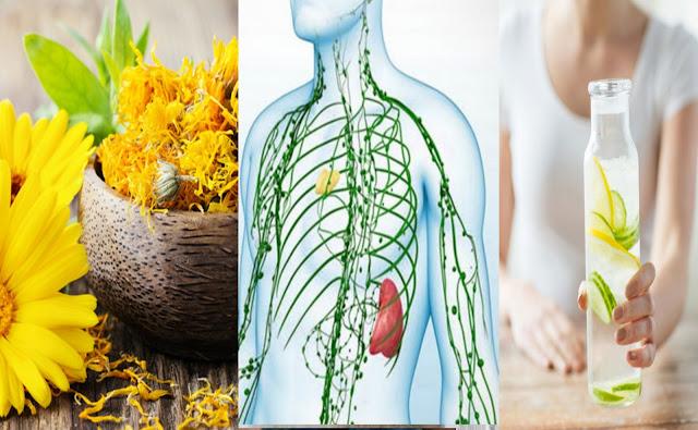 Comment faire une détoxification du système lymphatique naturellement