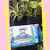 REVIEW : Sensasi Semriwing, Lebih Rileks saat Menstruasi - CHARM Cooling Fresh