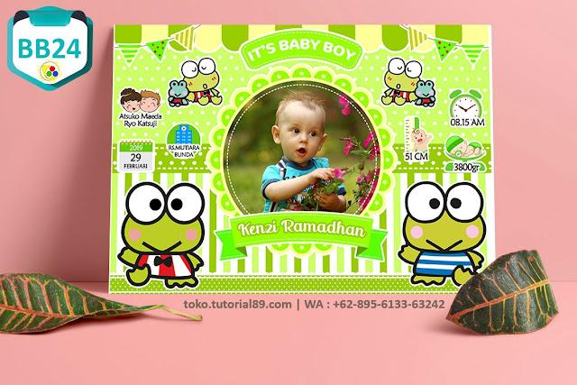 Biodata Bayi Costume Boy Girl Kode BB24 | Pangeran Kodok