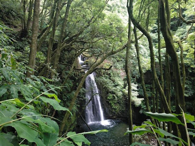 Vista desde el camino del Salto do Prego (Azores)