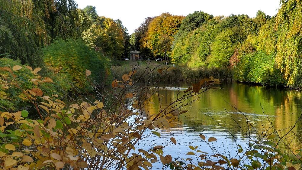 Herbststimmung,  blattfärbung