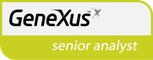 GeneXus Senior Analyst