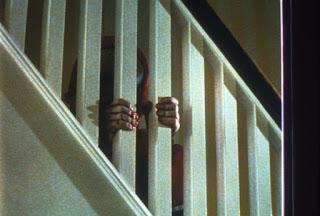body horror kanada david cronenberg the brood
