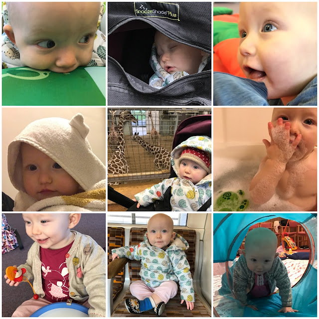 A collage of 9 pictures of a baby girl between 11 and 12 months. Including asleep with a snoozeshade, in a cuddle dry towel, in front of some giraffes, eating bubbles in the bath and sitting on a tube train sleep