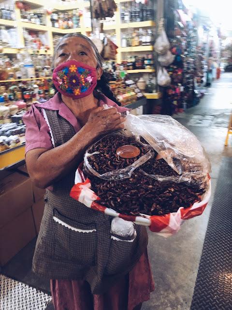 Chapulines Oaxaca City