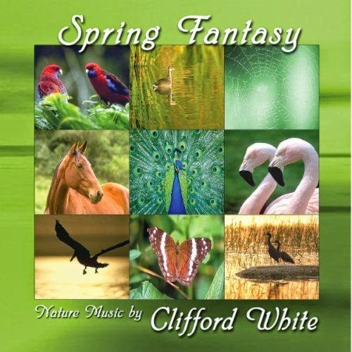 http://www.mediafire.com/download/fjq39l8tsnbnam7/Clifford+White+-+Sping+Fantasy+%28progressive+infinite%29.zip